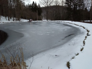 Pond Frozen