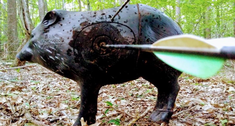 Archery Hog